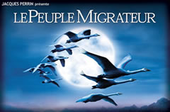 Le Peuple Migrateur:鸟的迁徙,迁徙的鸟