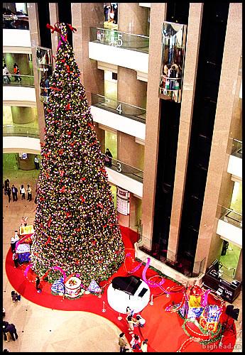 时代广场的圣诞树