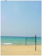 海边的排球网