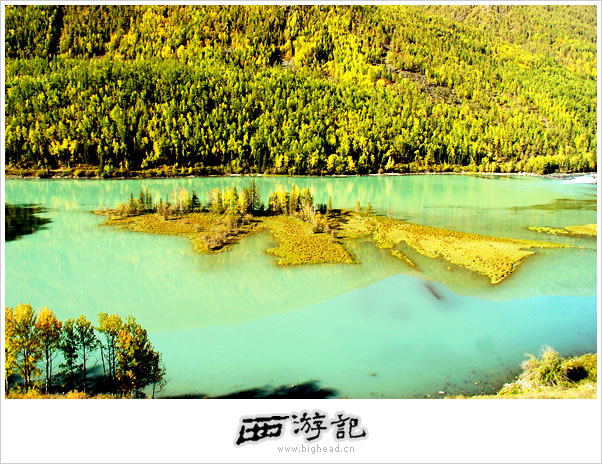 喀纳斯湖的照片