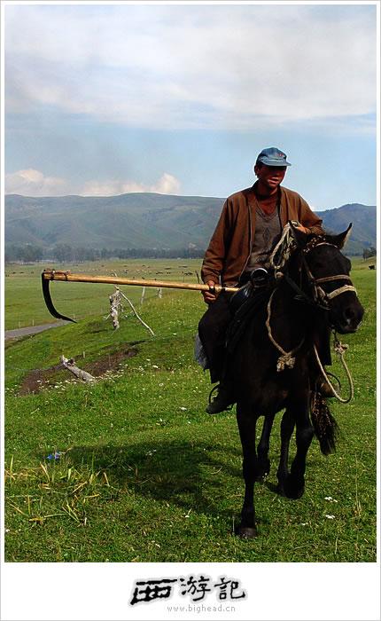 那拉提草原的照片